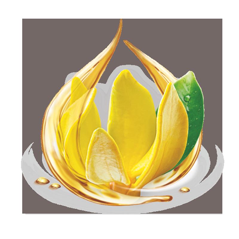 Ylang Ylang For Natural Hair